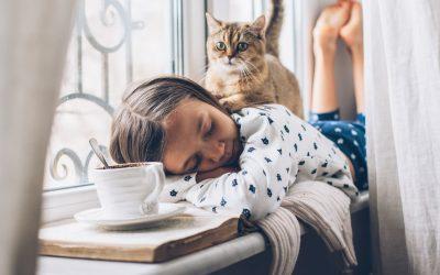 11 astuces pour rendre sa maison plus chaleureuse
